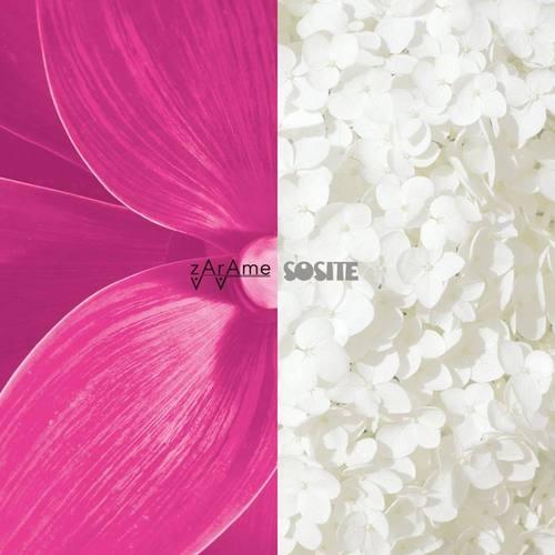 SOSITE / zArAme - split